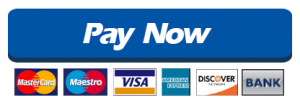 pay-now-button